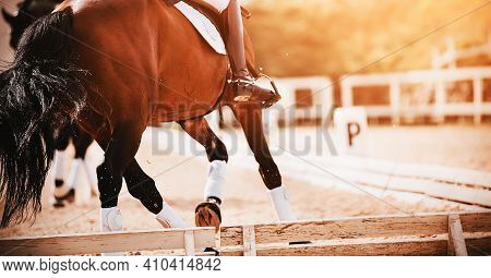 A Bay Shod Horse With A Rider In The Saddle Trots In A Dressage Competition, Illuminated By Sunlight
