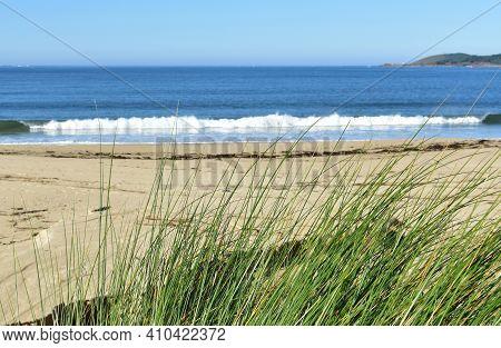 Beach With Grass On Sand Dunes At Famous Rias Baixas Region. Muxia, Coruña, Galicia, Spain.