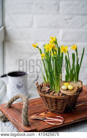 Narcissists Stand On A Wooden Tray With Handles From A Beige. Spring Daffodils Stand In A Woven Bask
