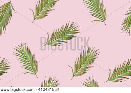 Tropical Palm Leaves Seamless Pattern On Pink Background, Tropical Nature Texture. Summertime Backgr