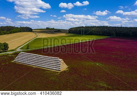 Red blooming crimson clover field (Trifolium incarnatum) and heap of bales seen from above