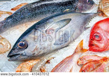 Seafood on ice at the fish market, tuna fish