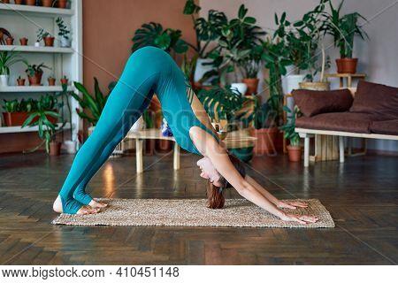 Young Sporty Woman Practicing Yoga Standing In Downward Facing Dog Asana At Home, Adho Mukha Svanasa