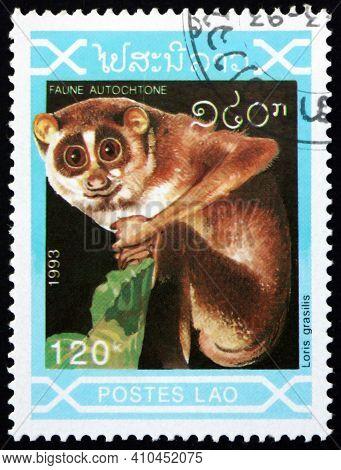 Laos - Circa 1993: A Stamp Printed In Laos Shows Slender Loris, Loris Grasilis, Is A Genus Of Loris