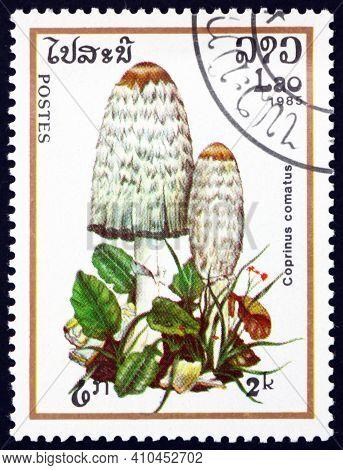 Laos - Circa 1985: A Stamp Printed In Laos Shows Shaggy Ink Cap, Coprinus Comatus, The Young Mushroo