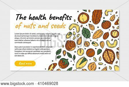 Nuts And Seeds Landing Page Or Flyer In The Doodle Style. Vector Template With Walnuts, Macadamia, H