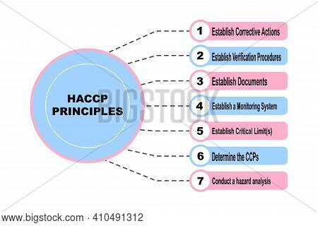 Diagram Concept With Haccp Principles Text And Keywords. Eps 10 Isolated On White Background