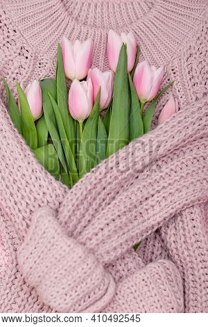 Bouquet Of Pink Pastel Tulips On Pink Knit Sweater Background, Top View Of Pink Tulips Bouquet For W