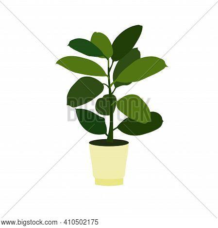 Flower Pot Ficus In Pot Icon Art Design Element Stock Vector Illustration For Web, For Print, For Fl