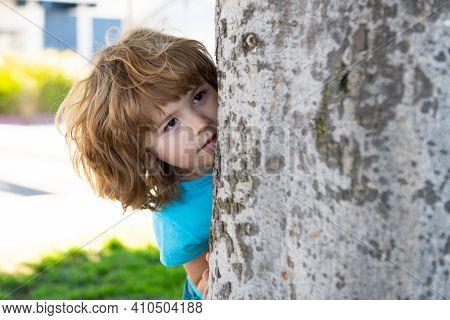 Kids Games. Playing Hide And Seek. Peekaboo. Little Boy Hiding By Tree