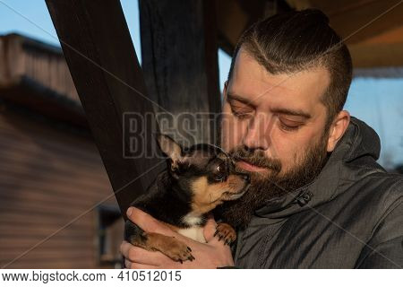 A Man In A Jacket With A Chihuahua Dog. A Man With A Beard With A Chihuahua Pet. Chihuahua, Man,