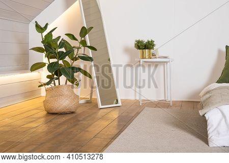 Home Plant Ficus In Straw Bag. Minimal Modern Interior Design. Stylish Green Plant In Wicker Pot Nea