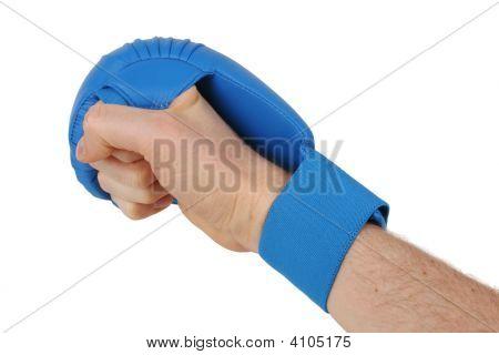 Fist With Karate Glove