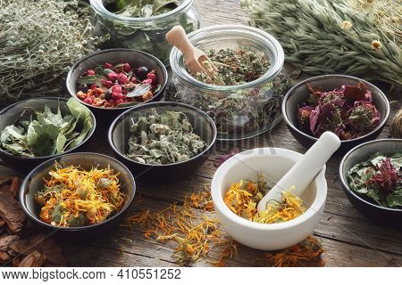Mortar, Bowls And Jars Of Dry Medicinal Herbs On Table. Healing Herbs Assortment. Alternative Medici