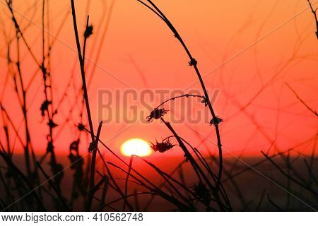 Sun Setting Beyond Plants And Tallgrass On A Prairie Taken At Windswept Grasslands In The Whittier H
