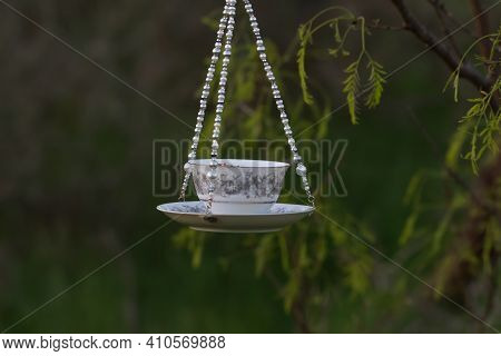 Country Landscape Of A Teacup Bird Feeder Hanging In A Mesquite Tree