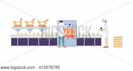 Poultry Factory Conveyor For Eggs Production, Flat Vector Illustration Isolated.