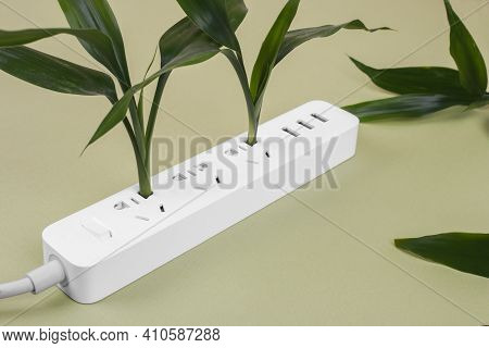 Stylish White Extension With Plants Inside. Electrical Power White Strip Or Extension Block With Soc