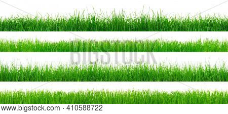 Green grass isolated on white background. The collection different types of lawn