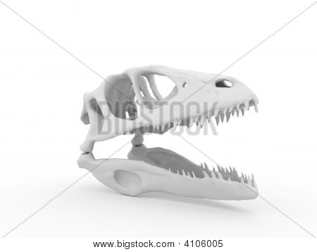 One Dinosaur head isolated on white background poster