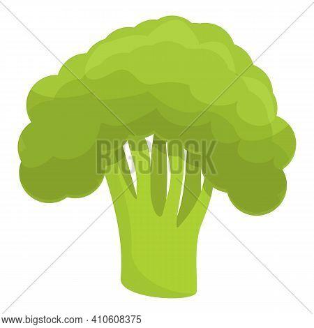 Broccoli Icon. Cartoon Of Broccoli Vector Icon For Web Design Isolated On White Background