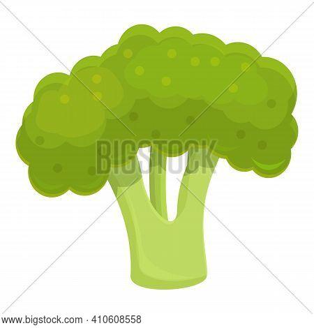 Vegan Broccoli Icon. Cartoon Of Vegan Broccoli Vector Icon For Web Design Isolated On White Backgrou