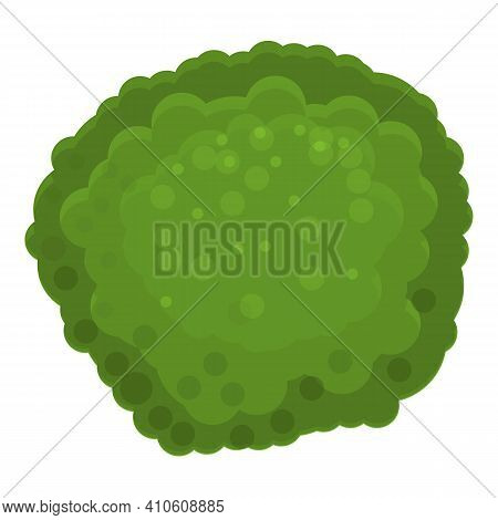 Green Broccoli Icon. Cartoon Of Green Broccoli Vector Icon For Web Design Isolated On White Backgrou