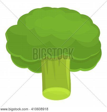 Salad Broccoli Icon. Cartoon Of Salad Broccoli Vector Icon For Web Design Isolated On White Backgrou