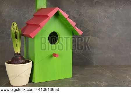Beautiful Bird House And Potted Hyacinth Flower On Grey Stone Table, Space For Text