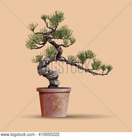 Beautiful Realistic Tree.tree In Bonsai Style. Bonsai Tree With Unusual Twisted Trunk On The Low Rou