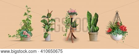 Set Of Vector Realistic Detailed House Or Office Plant For Interior Design And Decoration.tropical A