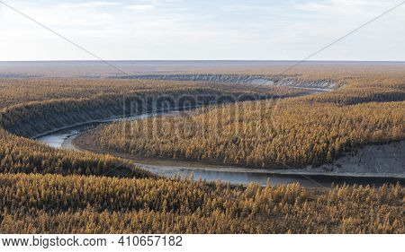 Landscape With Autumn Orange Larch Taiga And A Bend In The River From A Helicopter. The Siberian For