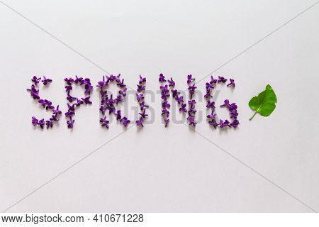 Spring Creative. Layout With The Word Spring Made Of Flowers, Letters Made Of Lilac