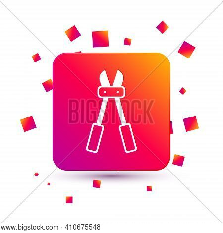 White Bolt Cutter Icon Isolated On White Background. Scissors For Reinforcement Bars Tool. Square Co
