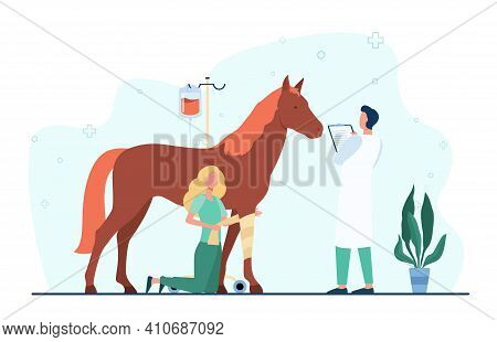 Veterinarian Giving Treatment To Horse. Pet Doctor, Foal, Trauma. Flat Vector Illustration. Veterina