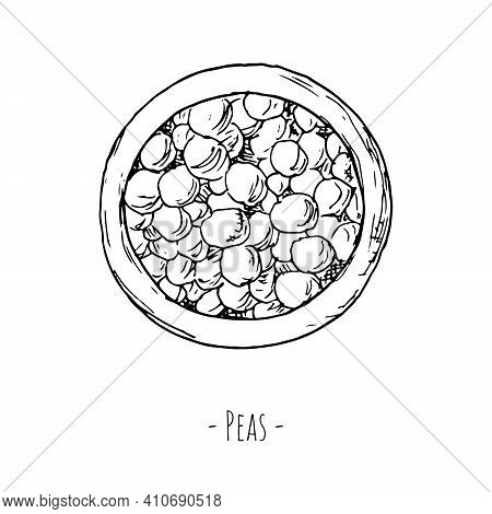 Peas Cup. Vector Illustration. Isolated On White. Top View.