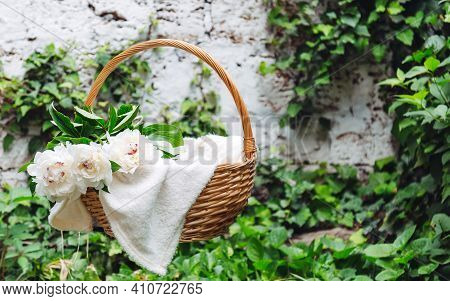 White Peonies Blooming Flower Bouquet In Wooden Picnic Basket On White Plaid Outside. Picnic And Rom