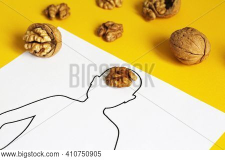 Anatomical Concept Of The Brain In The Form Of A Walnut.