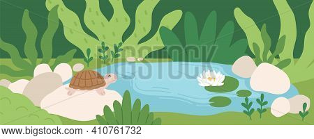 Scene With Cute Turtle Sitting On Stone Near Pond With Water Lily. Panoramic View Of Rainforest With