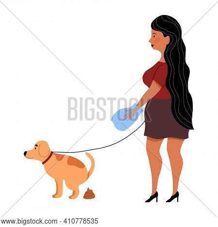 Woman Clean Up After Dog Poop. Hand In Plastic Bag. Girl With Pet Walking On Leash. Dog Pooping. Fla