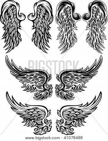 Angel Wings  Vector Illustrations