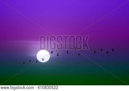 Beautiful Green Purple Violet Sunset And Silhouette Of Birds Fly Passing Sun And Blur Sky