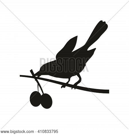 Bird Perched On A Branch And Holding Berry. Vector Black Icon