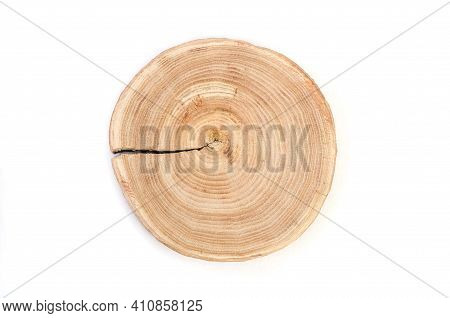 Cross Section Of A Cut Wood Tree Trunk Slice With Wavy Pattern Cracks And Rings Sawed Down From The