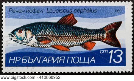 Republic Of Bulgaria - Circa 1983: Postage Stamp 'european Chub - Leuciscus Cephalus' Printed In Rep