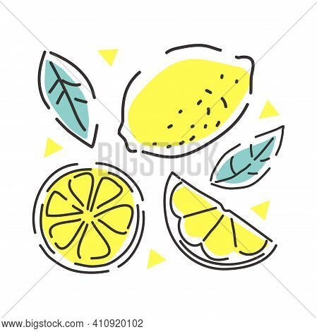 Juicy Lemon On A White Background With Leaves. Lemon Slices. Contour Abstract Illustration.