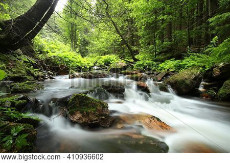 Forest stream Nature spring landscape Nature background river Nature landscape Nature landscape Nature background landscape yellow Nature landscape water Nature background landscape waterfall Nature landscape background Nature landscape Nature background.