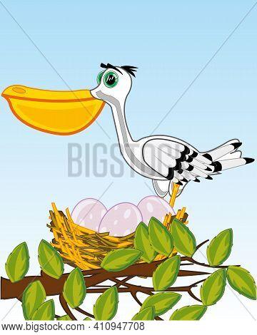 Bird Pelican On Jack With Egg On Tree