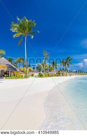 Tropical Beach In The Maldives. Summer Beach Swimming Pool On Sunny Day With Palm Trees, Tropical La