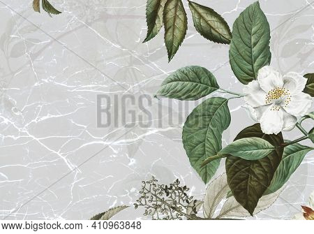Marble Textured Background With Musk Rose High Quality